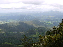 Mount Warning from Best of All lookout P1020238 (benhosg) Tags: springbrooknationalpark