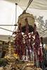 Paola (Coxxolino) Tags: calabria peperoncini rosso