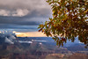 The Autumn Leaves (Hanna Tor) Tags: outdoor landscape nature mountains canyon grandcanyon tree autumn sky 7dwf
