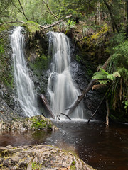 Hogarth Falls (Russell Lucas : Real landscapes with natural light) Tags: hogarthfalls landscape strahan tasmania waterfall