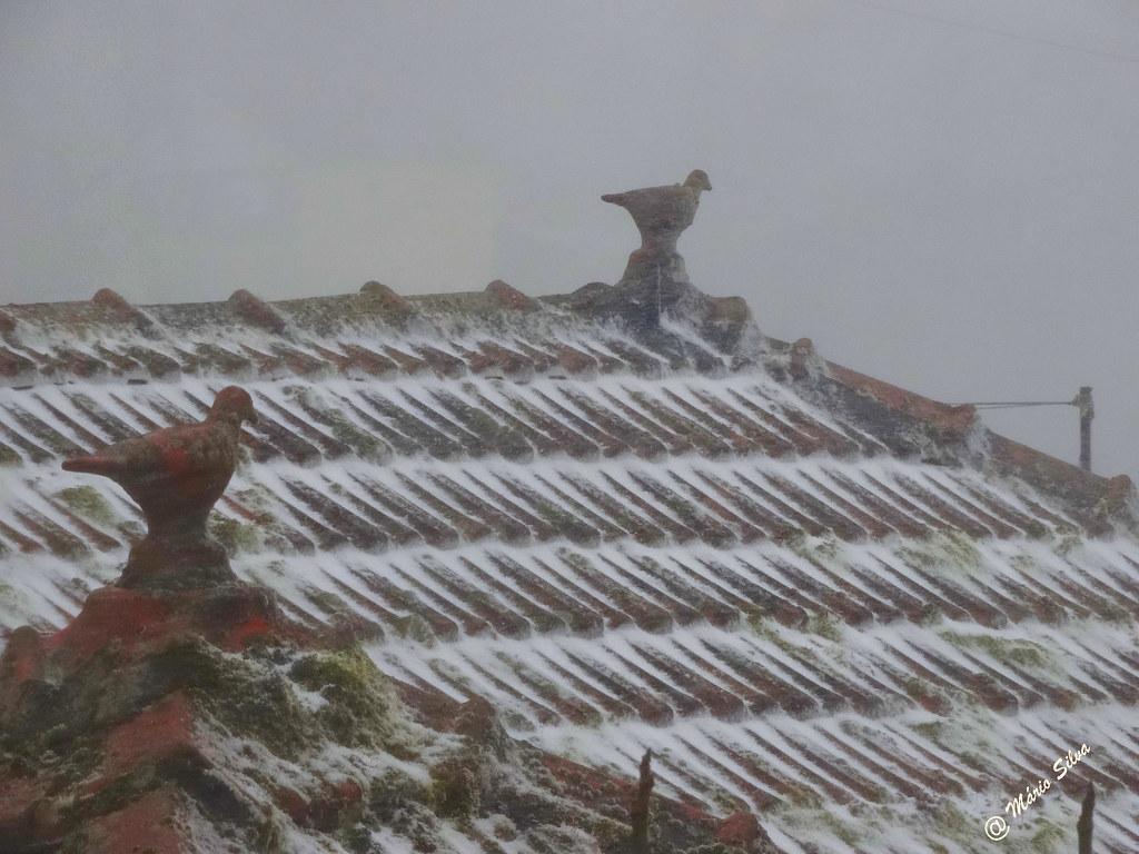 Águas Frias (Chaves) - ...os pássaros de  barro no cume do telhado esbranquiçado ...