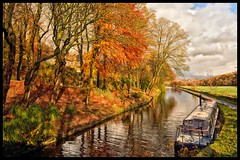Autumn on the Canal (belly.1964) Tags: nikond7200 sigma1850f28 huddersfield canal autumn water trees narrow boat reflection leaves fall