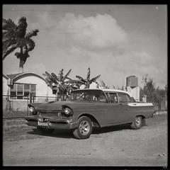 Mercury (*altglas*) Tags: mediumformat mittelformat 6x6 120 film analog expired expiredfilm orwonp20 bw monochrome zeiss superikonta 53316 cuba havana oldtimer car