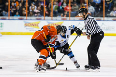 "Missouri Mavericks vs. Wichita Thunder, February 3, 2017, Silverstein Eye Centers Arena, Independence, Missouri.  Photo: John Howe / Howe Creative Photography • <a style=""font-size:0.8em;"" href=""http://www.flickr.com/photos/134016632@N02/32591262291/"" target=""_blank"">View on Flickr</a>"
