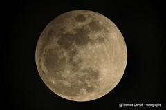 Snow moon Lunar Eclipse (Thomas DeHoff) Tags: full moon snow lunar eclipse sony a580 70400