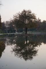 parque Ohiggins