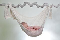 Baby kind en gezinsfotografie van PaulOudFotografie (8)