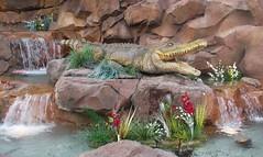 Looks can be deceiving (Chad Sparkes) Tags: plants water restaurant waterfall alligator scenic disney wdw waltdisneyworld animatronic downtowndisney rainforestcafe chadsparkesphotography