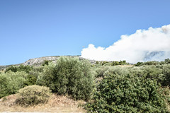 GREECE-SOCIETY-WILDFIRE (X-Andra) Tags: summer forest landscape fire greece burning wildfire catastrophy bushfire attica grc attika kareas ymittos ilioupolis