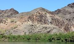 IMG_0105.jpg (DrPKHouse) Tags: arizona unitedstates loco winterhaven