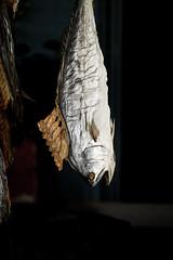 Auswahl-5978 (wolfgangp_vienna) Tags: thailand island asia asien harbour insel ko seafood hafen trat kut kood kokood kokut kohkut aoyai