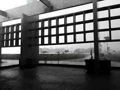 Chuva de Verão - São Paulo, SP - 18.12 (2) (mateus.dias078) Tags: osasco sp sampa são paulo vida life fotografia ruas sol sun nuvens nuvem sky laranja predios street building predio vila lopos chuva rain tarde