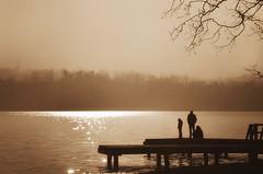 atmosfere lacustri (pamo67) Tags: pamo67 lacustrineatmospheres silhouette controluce backlight lago lake riflesssi reflections 3 three passerella catwalk pier attracco foschia mist rami branches pasqualemozzillo