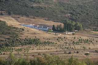 Spain Ibex Hunt & Driven Partridge Hunts 17
