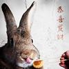 Chinese New Year 2017 (Jeric Santiago) Tags: animal bunny chinesenewyear conejo hase kaninchen lapin pet pineappletart rabbit tongue winterrabbit うさぎ 兎