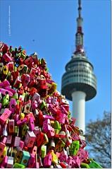 Candados del Amor.Padlocks of Love (ironde) Tags: padlocks candados jon ironde errazkin nikond7000 2017 corea korea asia seúl seoul torre tower n