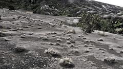 Le désert du cratère Irazu
