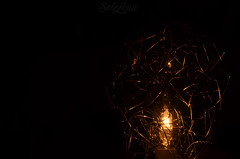 """""""Follow me, as I trip the darkness"""" (SoleLuna_) Tags: night light macromondays darkness black lightgame yellow colors colorless detail dateils contrast wow inspiredbyasong music"""