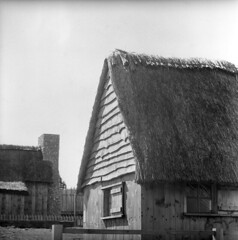 102659 09 (ndpa / s. lundeen, archivist) Tags: nick dewolf nickdewolf october bw blackwhite photographbynickdewolf 1959 1950s film 6x6 mediumformat monochrome blackandwhite mass massachusetts plymouth plimoth plantation plimothplantation museum livinghistorymuseum building roof thatch thatchroof thatchedroof house home architecture houses chimney