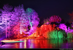 Fairy Woods, Winterlichter, Palmengarten, Frankfurt, Germany (JH_1982) Tags: fairy woods tree trees baum bäume ice eis icy lake see winterlichter palmengarten winter lights light art kunst installation colour color colours colors park garden artistic künstler farbe glow glowing leuchten dunkel dark darkness nacht night nuit noche notte 晚上 夜 ночь beleuchtet beleuchtung lumière luz 光 свет evening frankfurt frankfurter francfort fráncfort francoforte meno 美因河畔法兰克福 フランクフルト フランクフルト・アム・マイン франкфурт hessen hesse germany deutschland allemagne alemania germania