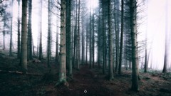 Last Exit (Augmented Reality Images (Getty Contributor)) Tags: atmosphere canon contrast creepy fog forest landscape lifeless longexposure nature perthshire scotland track trees winter
