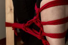 縛り red 1 (Andi [アンデイ]) Tags: 縛り shibari japanese bondage tie rope red fesseln tiedup knots japan girl redrope knoten bdsm fetishphotography fetish
