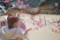 baby gets early spring (N.sino) Tags: m9 summiluxm50mm baby earlyspring plum plumblossom shinjuku shinjukugyoen 新宿御苑 梅の花 梅 早春 赤ちゃん 親子