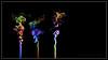 Smoke Series - 005 (J Michael Hamon) Tags: incense smoke colors spectrum three blackbackground photoborder tabletop photomanipulation hamon nikon d3200 35mm smokeart flickrelite abstract art nikkor
