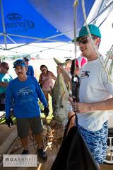 IMG_4269 (Max Kehrli) Tags: waves tournament lobster bermuda annual makin 2014 makinwaves
