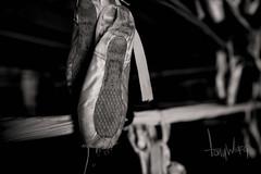 Ballerina in a boxing ring (Tony Weeg Photography) Tags: lighting street ballet white black photography nikon ballerina box main dramatic tony boxer boxing chandler gym d600 weeg tonyweegphotography