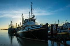 Steveston Sunset (Fisherman's Wharf) (SonjaPetersonPh♡tography) Tags: sunset canada britishcolumbia richmond fraserriver steveston stevestonvillage stevestonfishingvillage nikond5200 stevestonchannel nikonafs18140mmf3556edvr