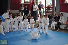 Judo-habay041