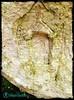 Chiesa scolpita nella roccia - Majella - Abruzzo - Italy