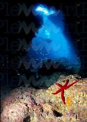 grotta-del-capo_15989634105_o