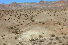 2011_11_30_3588.jpg (DrPKHouse) Tags: arizona unitedstates loco goldenvalley bouse