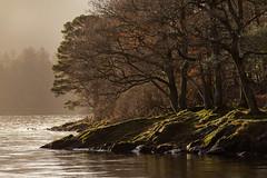 Derwentwater shore (Ade G) Tags: