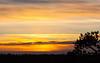 Sunset at Nuuksio (explore) (Antti Tassberg) Tags: 135mm auringonlasku aurinko kameraseura landscape lens national nature nuuksio park photowalk prime sun sundown sunset talvi winter espoo uusimaa finland explore