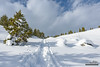 Uphill Trudge (kevin-palmer) Tags: grandtetonnationalpark nationalpark snowshoeing wyoming winter snow snowy cold nikond750 trail path clouds tamron2470mmf28 hill white tetonmountains trees sunshine