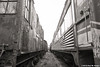 Passageway Through The Past (LostOzarkRambler) Tags: railcars train railroad rust abandonment monochrome blackandwhite bw 28mm nikond800