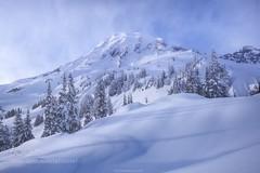 Winter Majesty (l3v1k) Tags: ifttt 500px landscape winter cold nature blue white snow washington pure mount rainier alex noriega