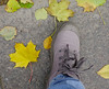 Leg in shoe on the autumn leaves (phuong.sg@gmail.com) Tags: autumn background beautiful boots brown color concept denim exercise fall fashion female foliage foot forest girl golden green ground hiking hipster human jeans kicking leaf legs lifestyle maple natural nature orange outdoor park people road season self selfie shoe trail trendy walk woman yellow