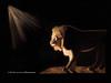 Lion Out For A Night Stroll (Kay Kochenderfer Photography) Tags: africa africa2016 lion lionsatnight malelion botswana