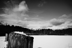 DSC04039-2.jpg (The Active Shooter) Tags: daytime turtlepond bnw dock