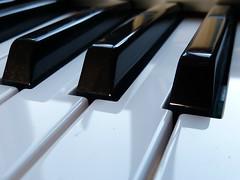 Organ Keys. Macro Monday - Corner (CalamityCam 2011) Tags: macromonday corner organ keys black white
