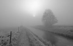 Winter in Engelbert (koos.dewit) Tags: nl 2016 bw engelbert fuji fujixe2 fujifilm fujinonxf1024mm groningen holland koosdewit koosdewitnl thenetherlands blackandwhite frost frozen landscape mist misty sun winter