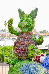 Piglet (disneylori) Tags: piglet winniethepooh topiary flowerandgardenfestival unitedkingdom worldshowcase epcot waltdisneyworld disneyworld wdw disney