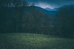Blue mountain (Chloé +++) Tags: blue bleu bleue mountain montagne colline vallée hill valley green grass herbe verte vert bois arbres trees tree arbre pyrénées occitanie couserans ariège france south sud