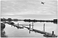 Fraser River (Zorro1968) Tags: fraserriver richmond canada blackandwhite dock pier airplane aircraft