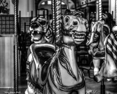 Nightmare On the Carousel (that_damn_duck) Tags: blackandwhite carouselhorse amusement indoor bw blackwhite