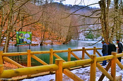 Bolu yedigöller milli parkı  Bolu yedigöller national park  1✏#road 2✏#yedigöller 3✏#millipark 4✏ #bolu 5✏#nationalpark 6✏#lake (teknisyenarif) Tags: nationalpark millipark lake bolu yedigöller road